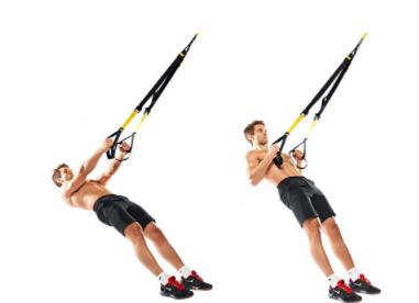 רצועות אימון תואם TRX בצבעים-צהוב/שחור ורוד/שחור